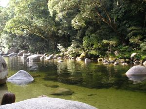 Mossman Gorge - the gateway to the Daintree