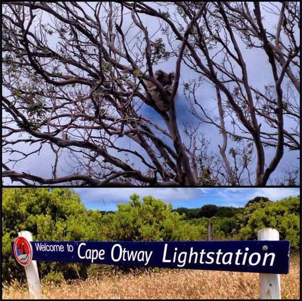 Cape Otway Lightstation