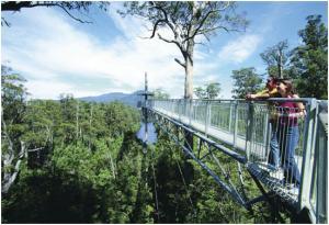 Tahune Forest Airwalk, Tasmania, Australia