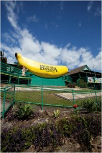 Big Banana at Coffs Harbour | WorldMark South Pacific Club by Wyndham