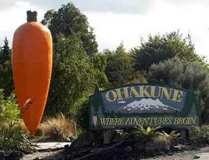 ohakune-big-carrot-2