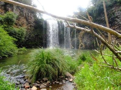 Whilst in Dorrigo, take a dip in the water pool at Dangar Falls.