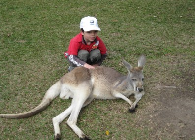 We could get right up close with a kangaroo.