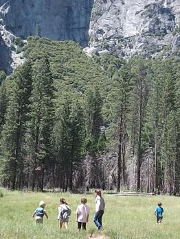 Kids searching for bears in Yosomite