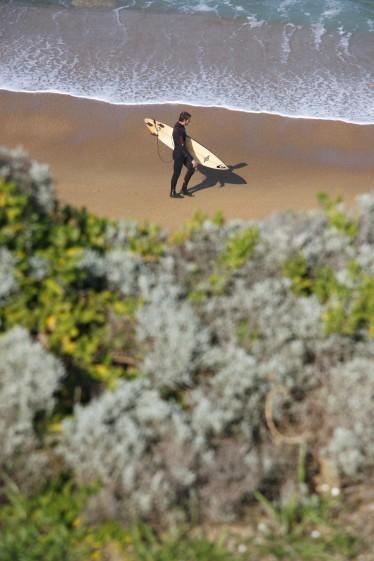 Torquay Surfer