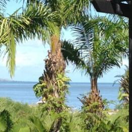 Fiji View
