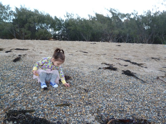Each afternoon spent on the gorgeous beach was so much fun. Abigail loved spotting the different coloured shells.
