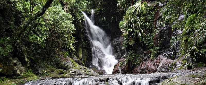 Springbrook waterfall 2