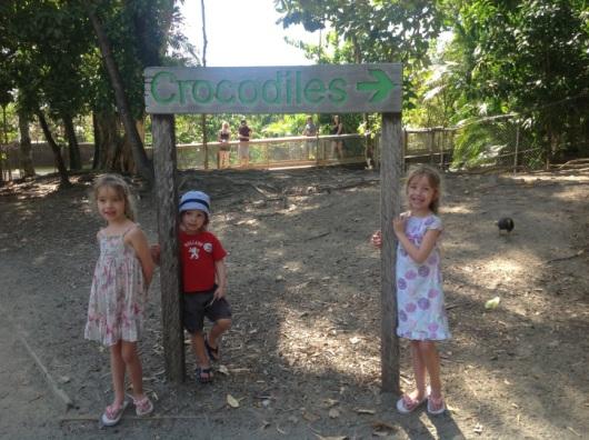 Crododiles