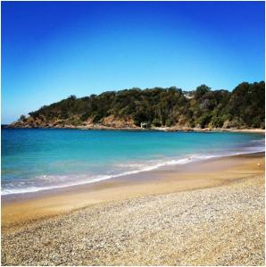 Breathtakingly beautiful beach at Treetops!