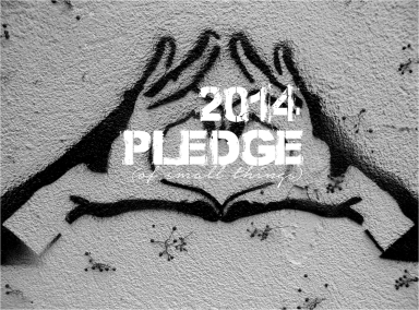 2014 Pledge of Small things