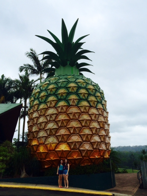 Big Pineapple, Sunshine Coast
