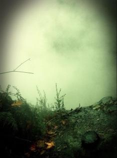 haunted mist rotorua